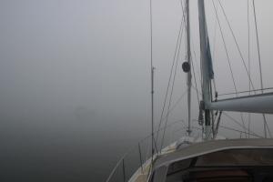 Reede Barhöft im Nebel
